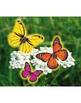 Legrační vlající motýl
